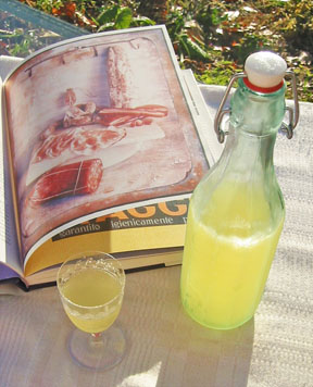 BV limoncello 01 Limoncello is Ready and Waiting!