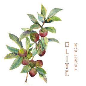 Olive Nere Tomato Ricotta Pasta from a Sicilian Kitchen