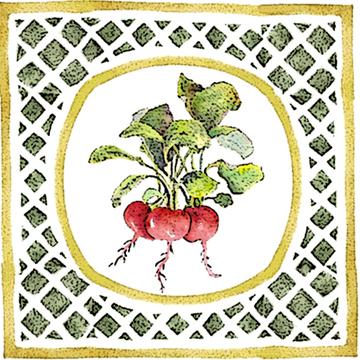 beets co c egbert Beet Borscht   Zahynacz Dowry