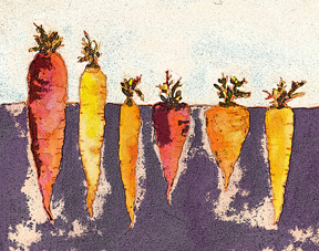 c egbert Carrots  Carrot Falafel