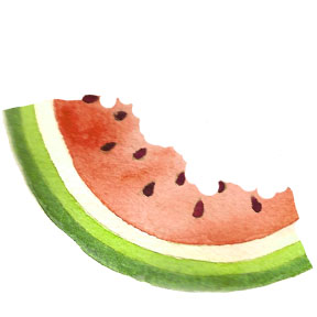 pt f watermelon quarter 4 c egbert Watermelon Life Cycle   Part 2   Spicy Slices, Salsa and Cooler