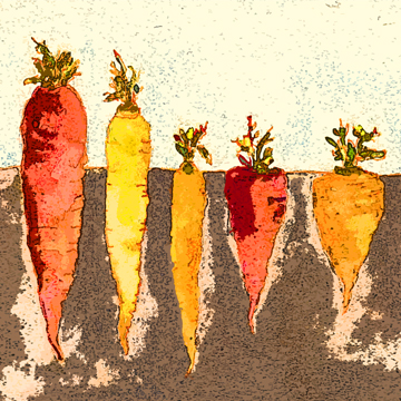 rainbow carrots c egbert Portugese Milk Mayo from a Vermont Kitchen
