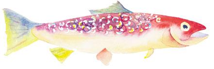 trout c egbert PIN   Print it Now
