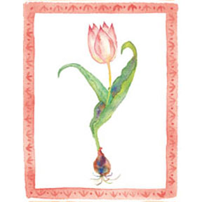 tulip 021 PIN   Print it Now